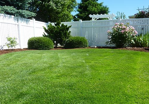 Lawn Care Services Fargo ND Moohread MN